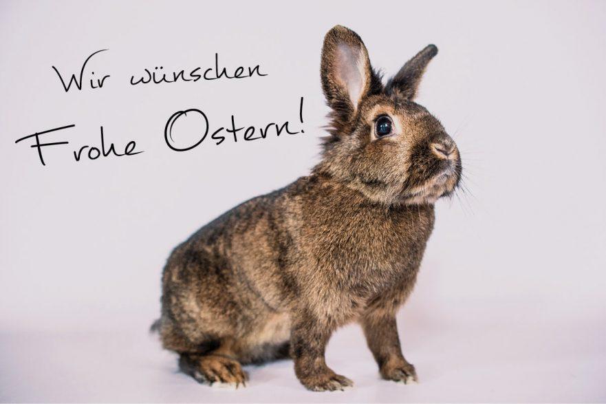 Frohe Ostern Fuchs-Hydraulik